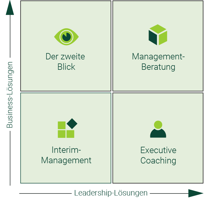 Management-Beratung, Executive Coaching, Der zweite Blick, Interim-Management